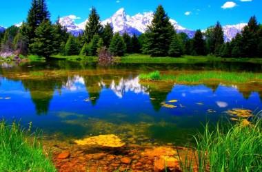Cool natural image
