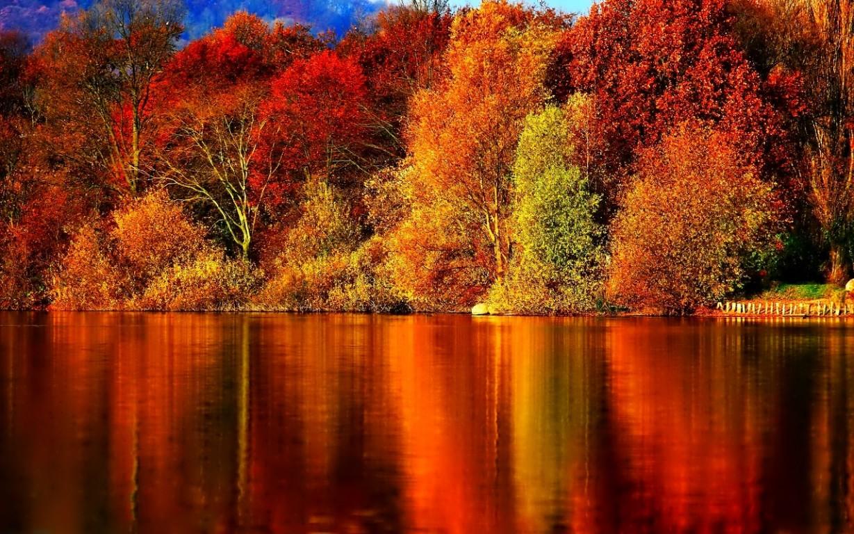 Free Autumn Wallpaper Free Autumn Wallpaper 2592