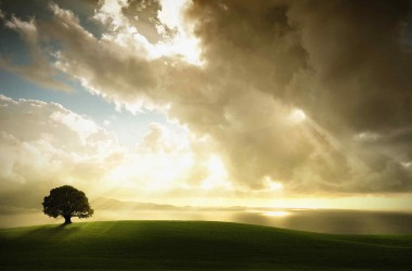 Landscape Sunshine Wallpaper 2423
