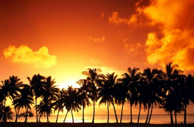 Sunset Scene Wallpaper 2518