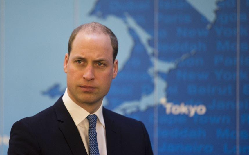 Wonderful Prince William Picture