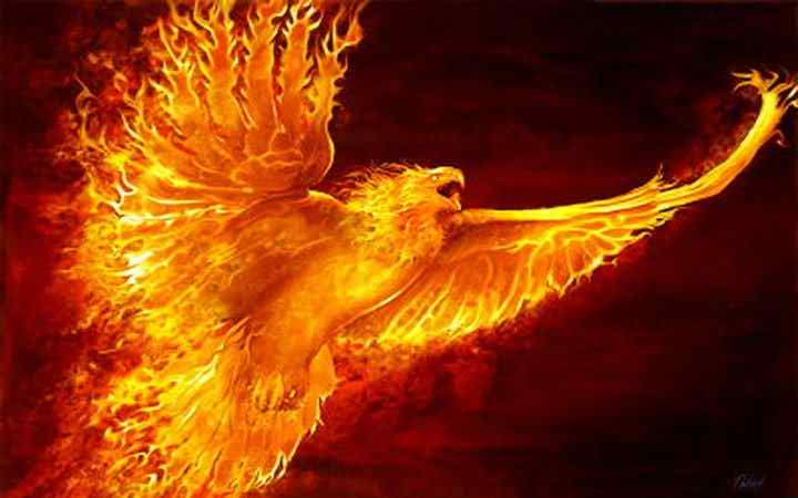 3D Phoenix Bird