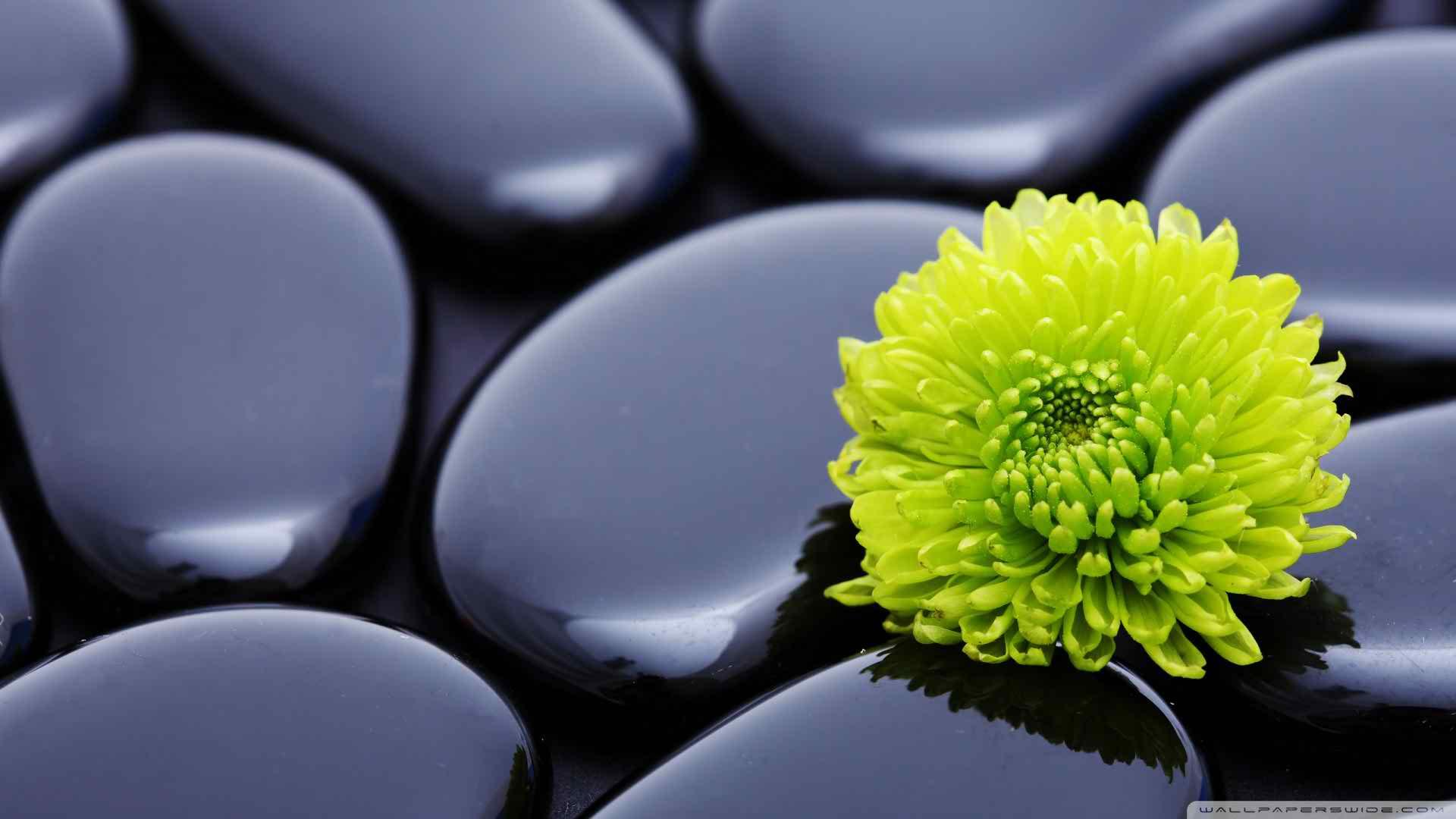 Natural Zen Image
