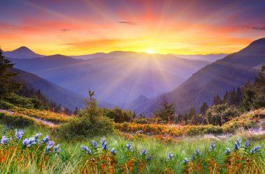 Nice Landscape Art