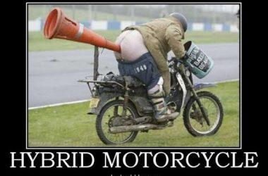 Top Crazy Funny Pics