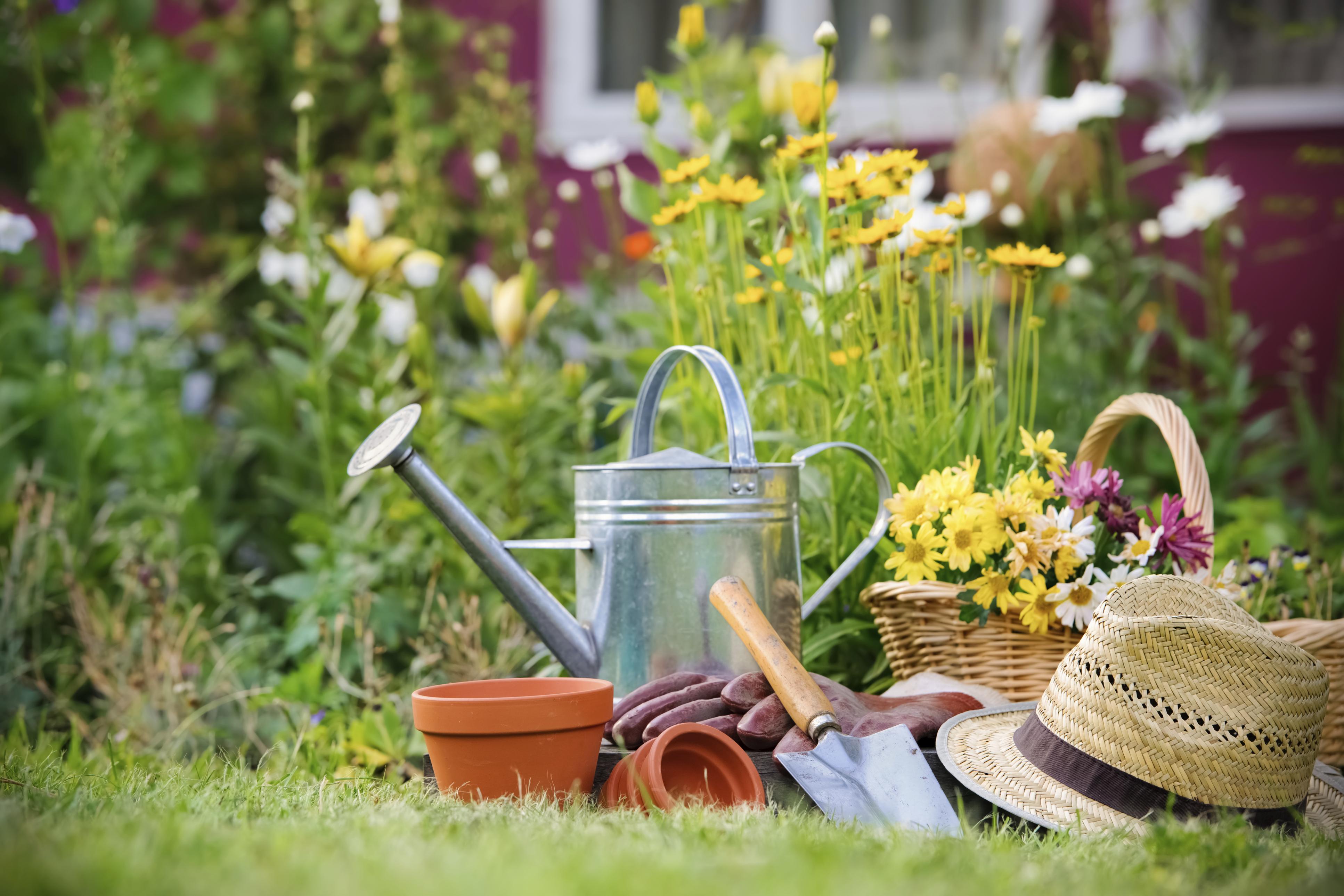 Gardening Basic