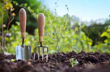 Gardening Coffee 9648
