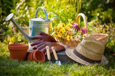 Widescreen Gardening