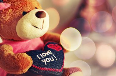 Best Cute Teddy Bear