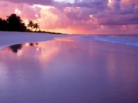 Best Purple Beach