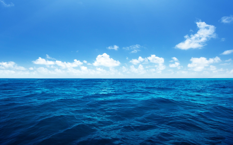 Free Sea Picture