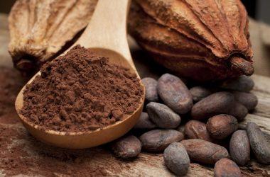 Nice Cocoa Image