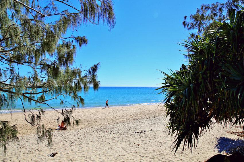 Free Coastal Beach