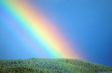 Super Rainbow 22884
