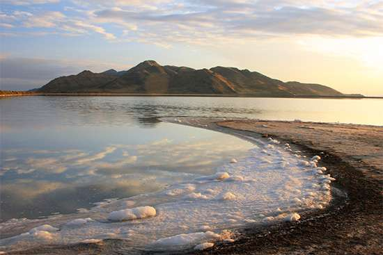Best Salt Lake