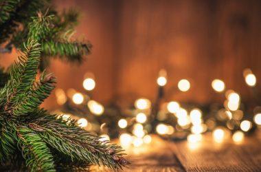 Nice Christmas Photo