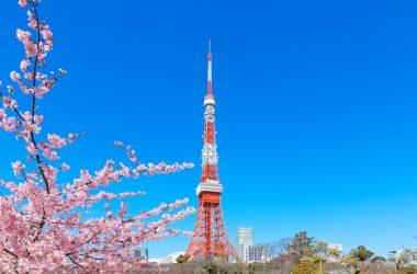Stunning Tokyo Tower