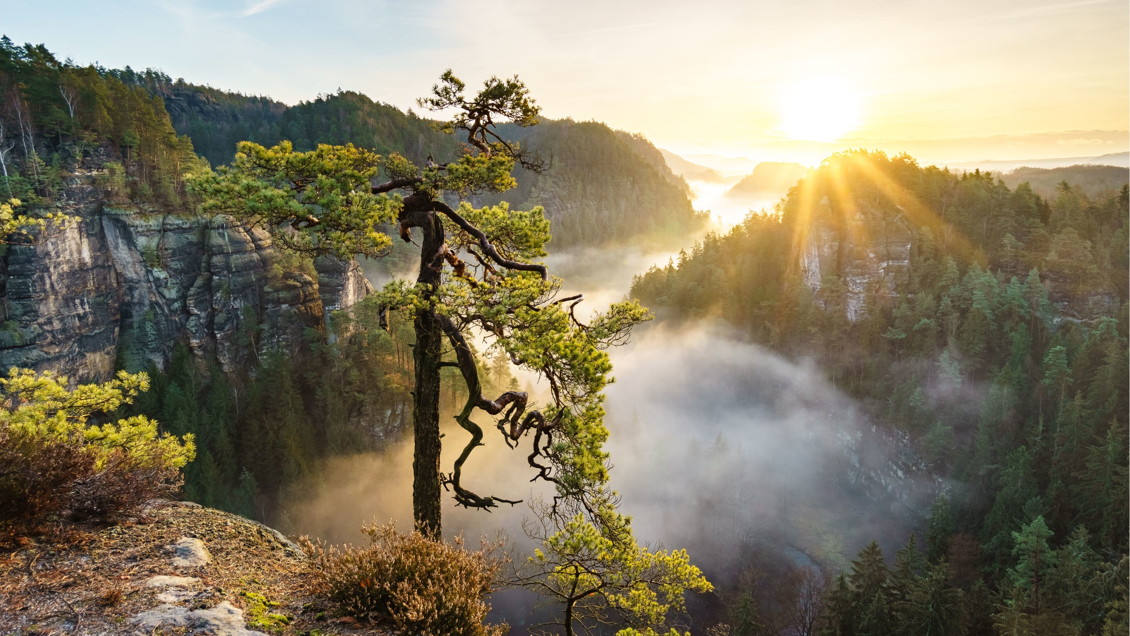 Beautiful Nature 4K