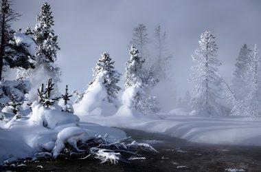 Beautiful Winter Wallpaper 24604