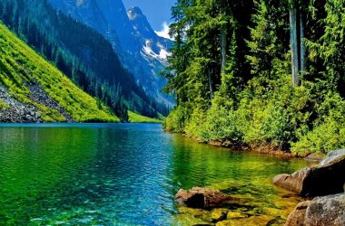 Nice Nature 4K