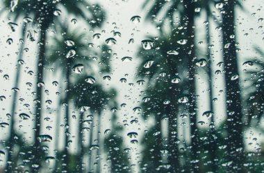 Free Rain Background 25025