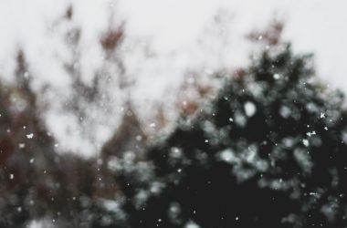 Nice Falling Snow 25154