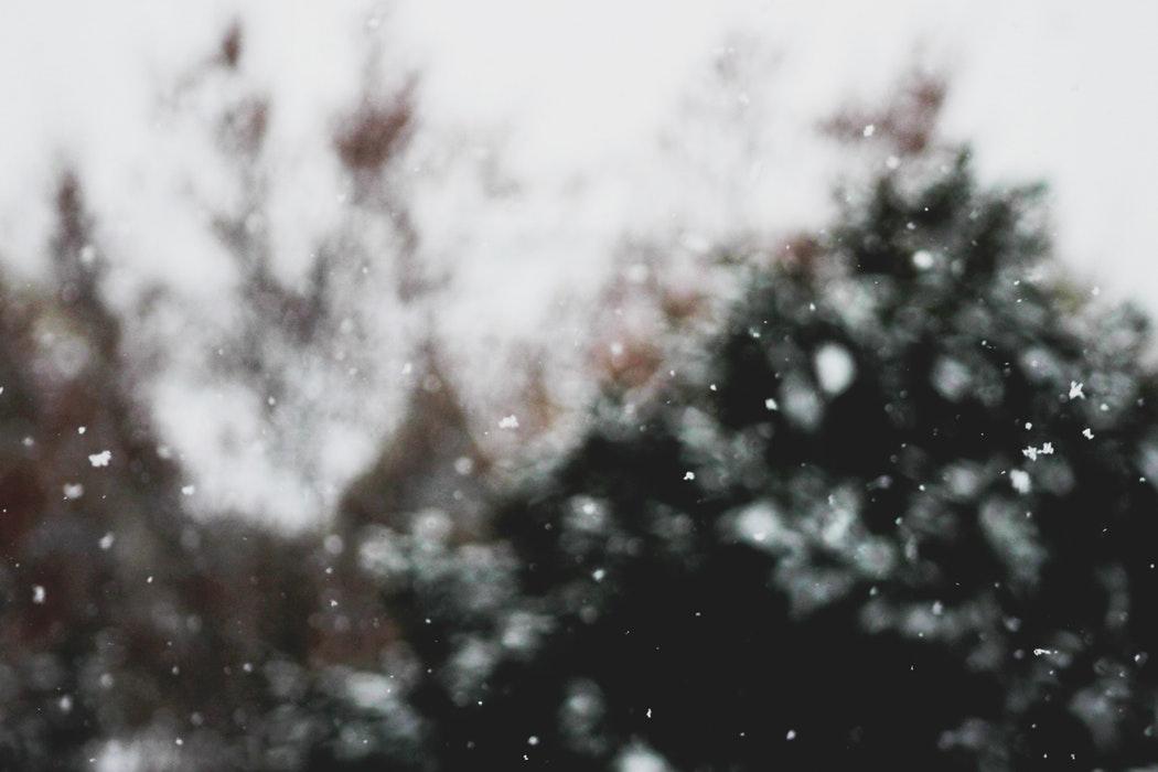 Nice Falling Snow