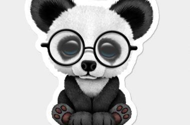 Top Cute Panda