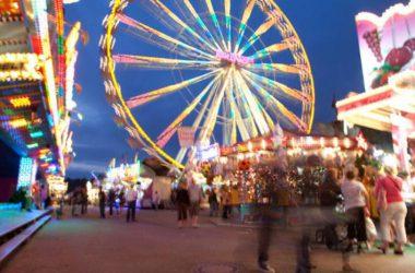 Amazing Amusement Park 26006