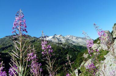 Beautiful Giau Pass 25911