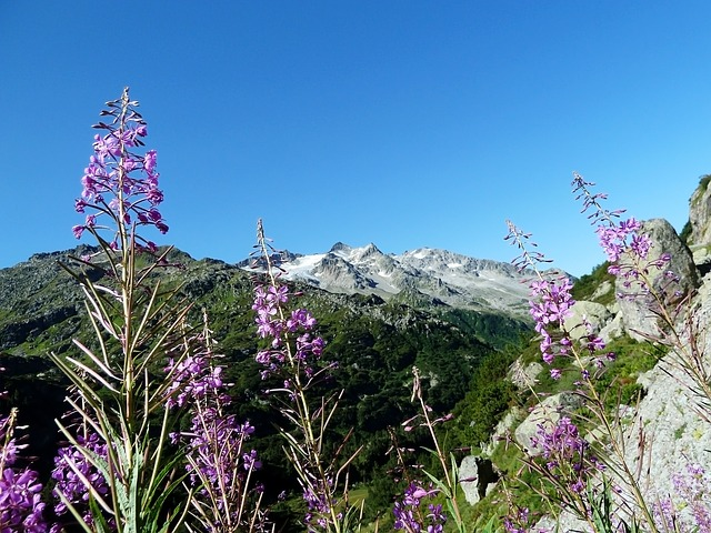 Beautiful Giau Pass