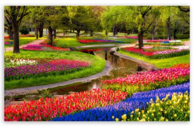 Garden Spring Wallpaper 4K