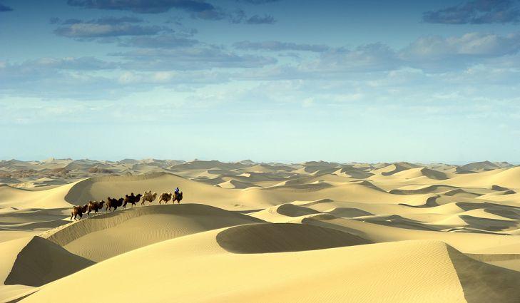 Widescreen Sand Dunes