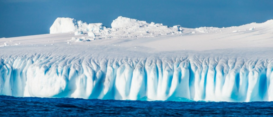 Free Antarctica