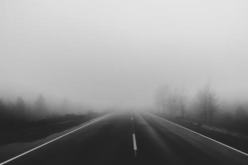 Free Fog Wallpaper