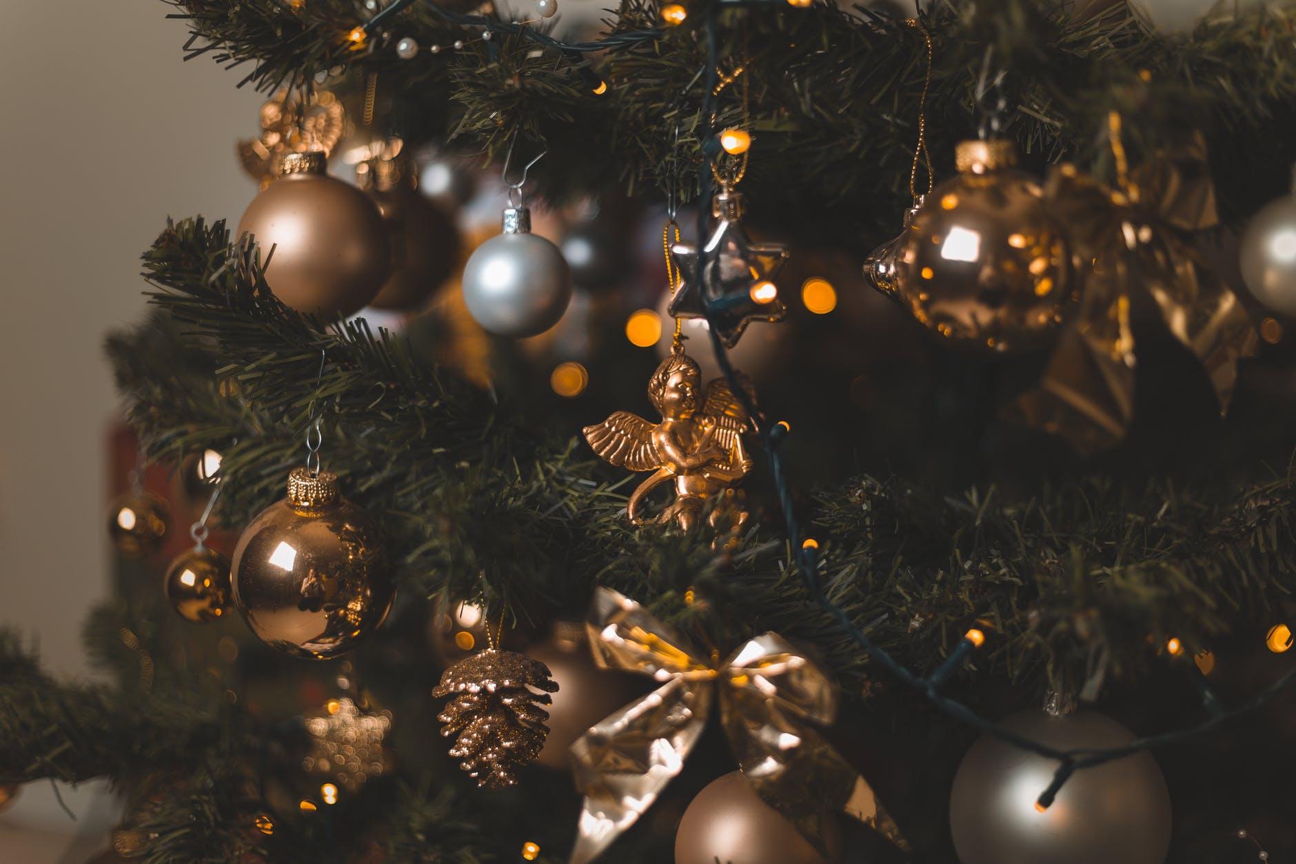 Amazing Christmas Pics