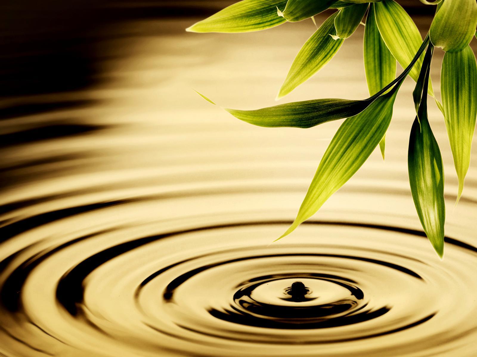 Water Ripple Wallpaper 28526