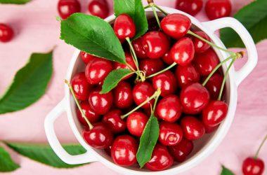 Landscape Cherries 28622