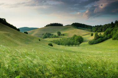 Cool Landscape Image