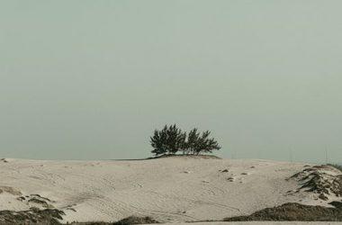 Nice Desert Image