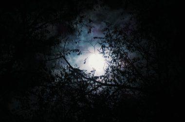 Best Moon Background