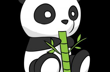 Art Cute Panda