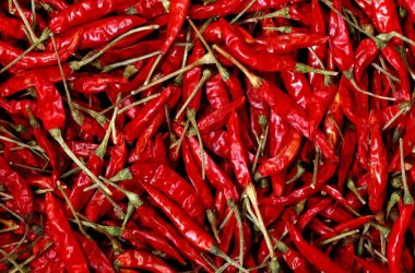 Free Hot Chili Wallpaper