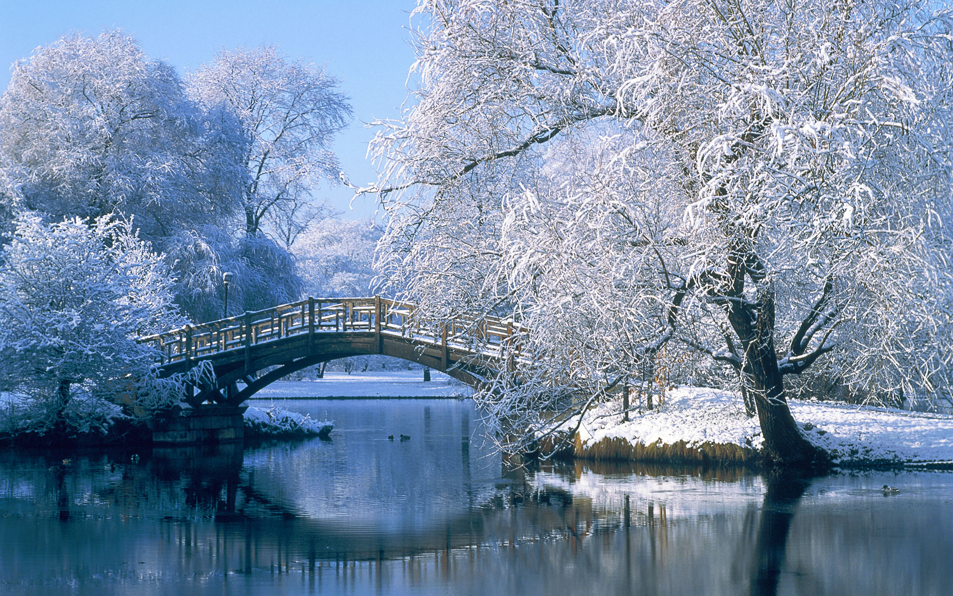 Bridge over a pond in the winter 33237