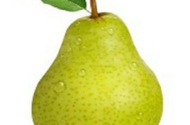 Best Pear Fruit