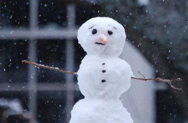 Cool Snowman Image
