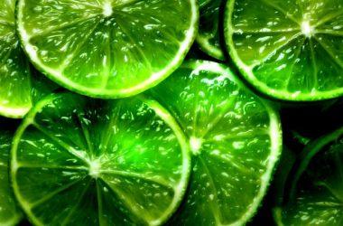 Natural Green Wallpaper