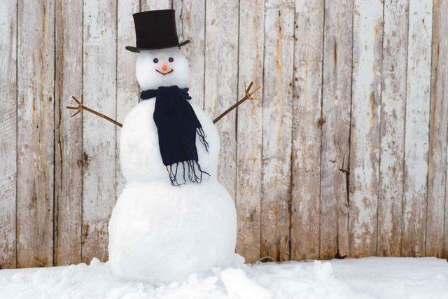 Nice Snowman Image