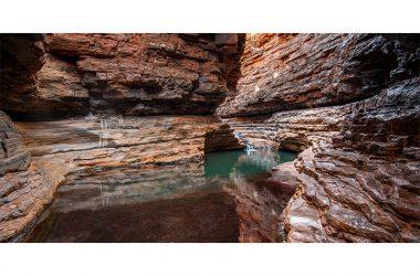 Landscape Kermits Pool