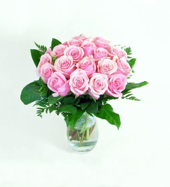 Super Pink Rose